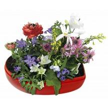 Blumen-Herz, Blumenmischung - rot