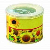 Sonnen-Dose, Zwergsonnenblume  - gelb