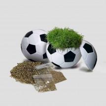 Rasender Fußball, Zimmerrasen - weiß
