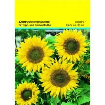 Samentütchen 82x114 mm, Zwergsonnenbl. - gelb