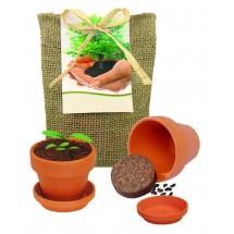 Pflanze Deinen Baum kleines Natur-Säckch. - natur