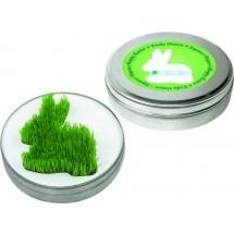 Wachsender Hase aus der Dose, Rasen - grün
