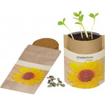 Natur Bag Sonne, Zwergsonnenblume - natur