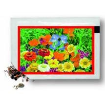 Samentütchen 80x55 mm, Blumenmischung - rot