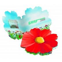 Klappkärtchen Blüte, Blumenmischung - rot