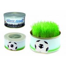Mini Garten Fußball - blau