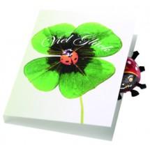 Klappkärtchen Glückskäfer - grün