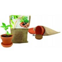 Pflanze Deinen Baum Natur-Säckchen - natur