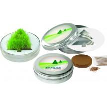 Wachsender Tannenbaum, Gras - silber